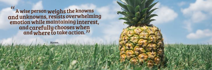 pineapplebirrenquote
