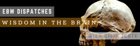 EBW Dispatches - Wisdom & the Brain